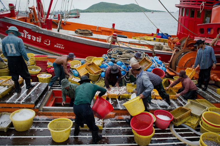 Migrant laborers sorting fish as they work on a Thai fishing boat