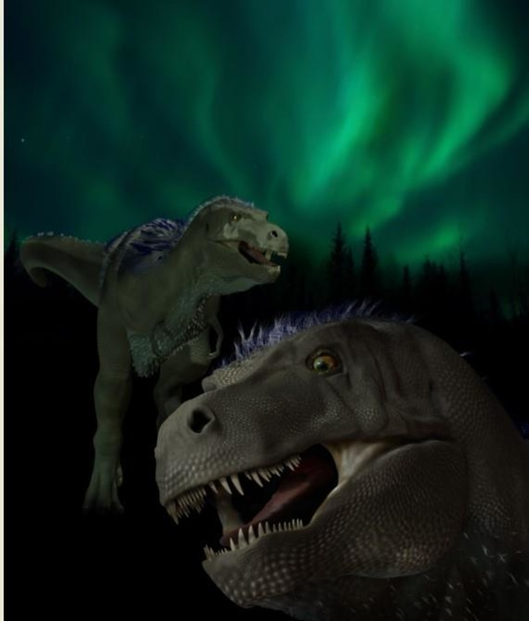 An artist's conception of Nanuqsaurus hoglundi, a pgymy tyrannosaur that lived in the Arctic 70 million years ago.