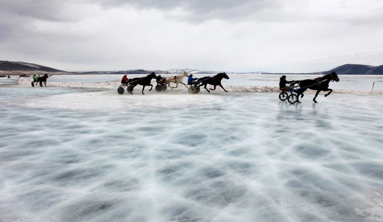 Image: Trotters compete in a harness race on the frozen Yenisei River during the 44th Ice Derby amateur horse race near the settlement of Novosyolovo