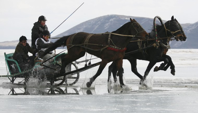 Image: A Russian Troika, a sledge drawn by three horses, competes on the frozen Yenisei River during the 44th Ice Derby amateur horse race near the settlement of Novosyolovo