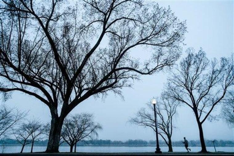 Image: Jogger runs along Potomac River