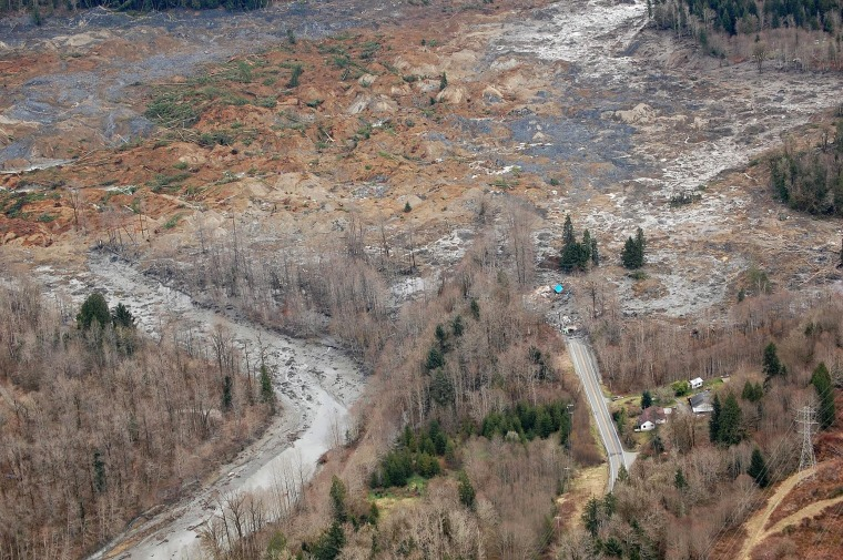 Image: Washington mudslide