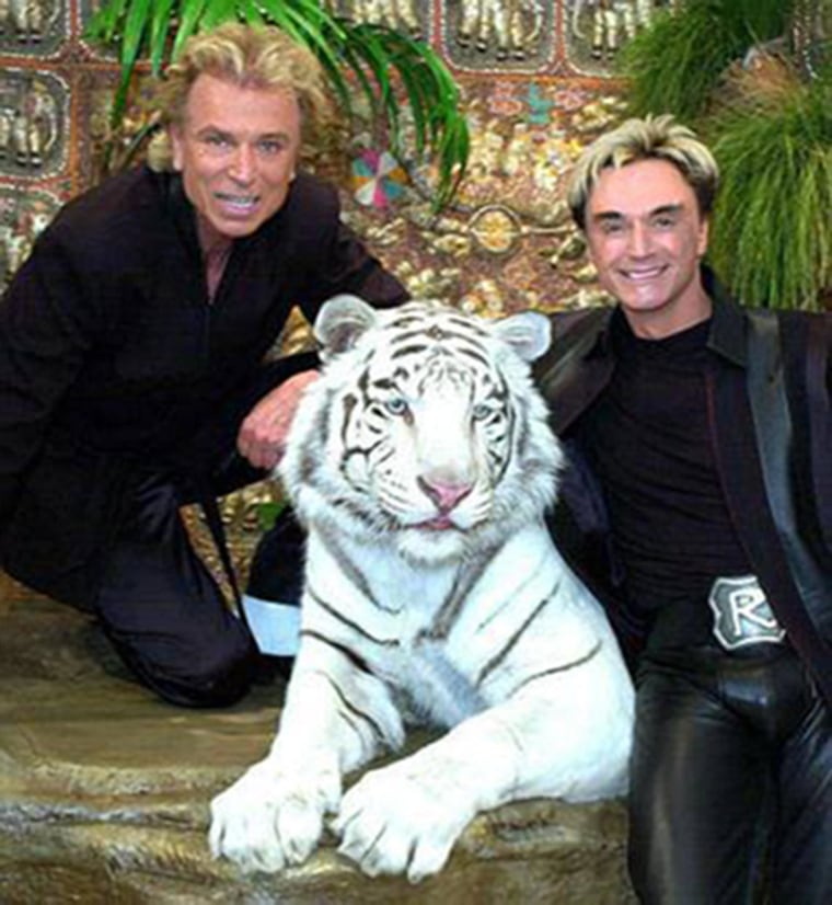 Image: Siegfried and Roy pose with their white tiger, Mantecore