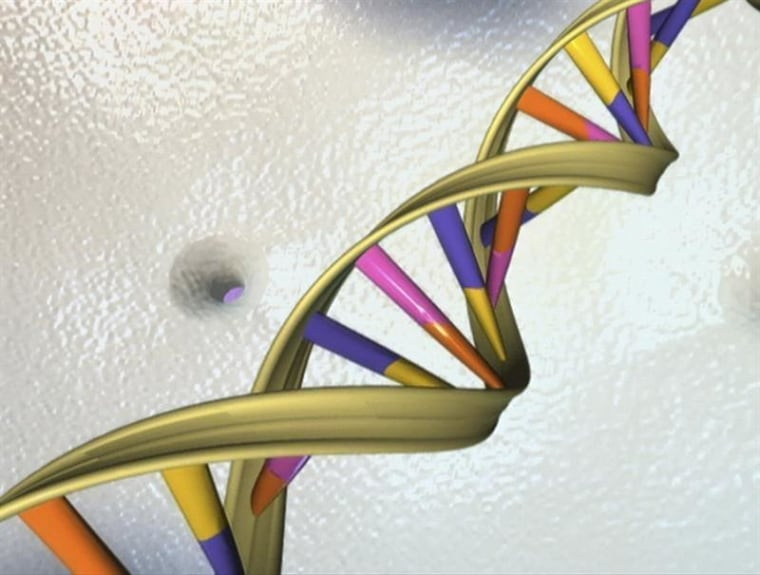 Scientists Unveil New 'Atlas' for Navigating Human Genome