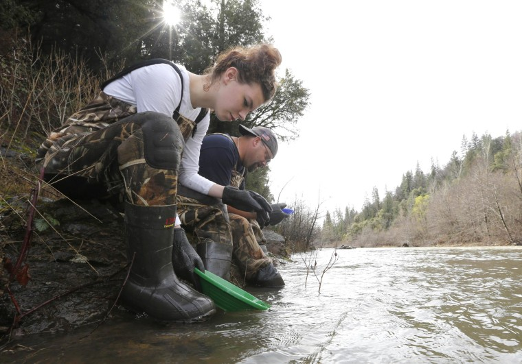 In this photo taken Tuesday, March 4, 2014 Tim Amavisca, 38, and his daughter Hailey, 15,  pan for gold along the Bear River near Colfax, Calif.