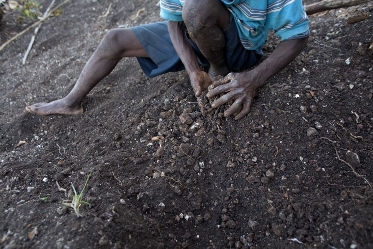 Image: Farmer Jean Romain Beltinor, 59, works the rocky dirt on his parched hillside to prepare for planting seeds he does not have in Bombardopolis, northwestern Haiti.