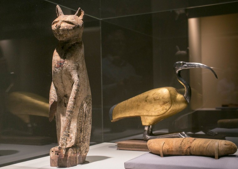 Image: A cat coffin with mummy and an ibis coffin