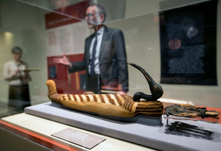 """Brooklyn Museum, Egyptian, Classical and Ancient Middle Eastern Art, curator, Edward Bleiberg speaks during a tour of the exhibit """"Soulful Creatures: Animal Mummies in Ancient Egypt,"""" at the Orange County's Bowers Museum in Santa Ana, Calif., March 20."""