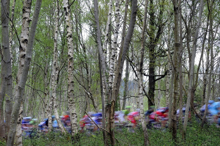 Image: The pack climb the Okorro hill in Lazkao during the first stage of the Tour of the Basque Country, a 153.4km ride around Ordizia, northern Spain, on April 7.