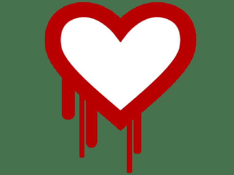 Image: Heartbleed bug