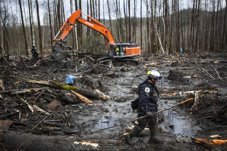 Image: Rescuers search the large debris pile left by a mudslide in Oso.