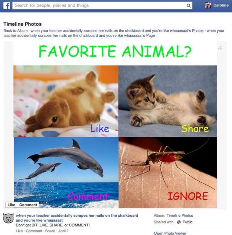 Like-Baiting Facebook