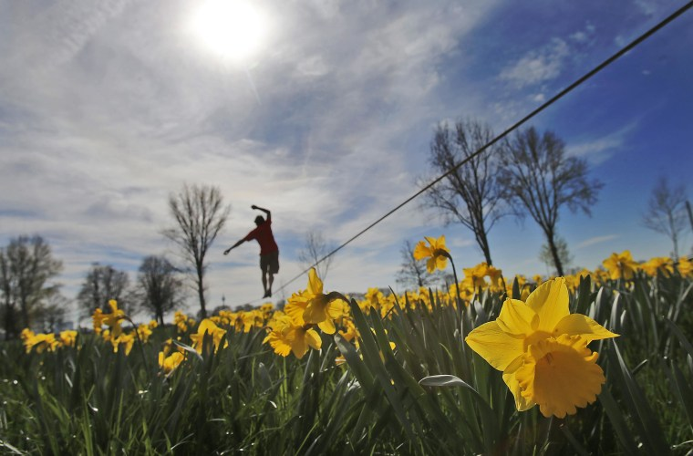 Image: Warm March in Germany