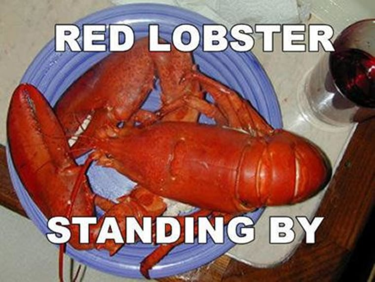 Red Lobster Standing By