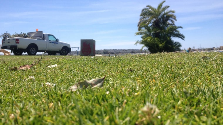 Image: San Diego police combed the grass of Bonita Cove Park and found close to 20 razor blades