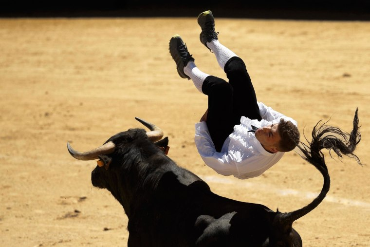 Image: A 'recortador' jumps over a bull during a bullfight in Madrid, Spain