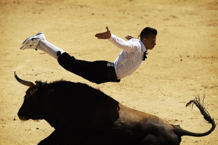 A 'recortador' jumps over a bull during a bullfight in Madrid, Spain, on May 2.
