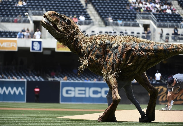 Image: A costumed dinosaur, Baby T, from 'Walking with Dinosaurs' throws out the first pitch before a baseball game
