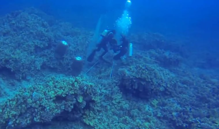 Image: A diver rips off the air supply of another diver 50 feet underwater off the Kona Coast of Hawaii