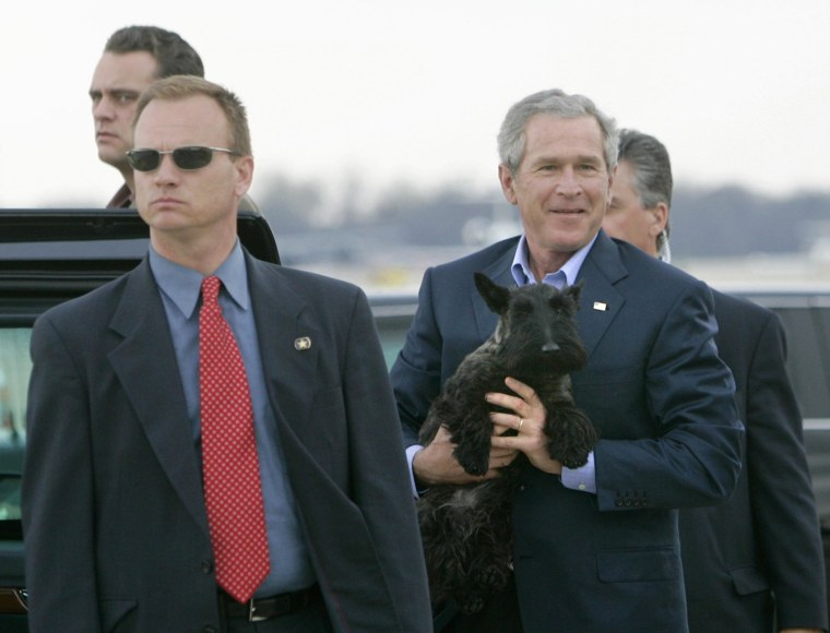 Image: Former U.S. President George W. Bush carries Miss Beazley at Andrews Air Force Base in Maryland