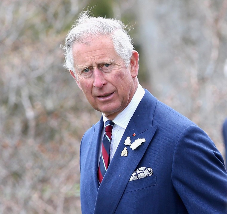 Image: Prince Charles in May 2014