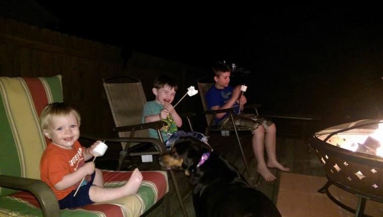 """Backyard Shenanigans in Indiana."" - Marcia Hakala"