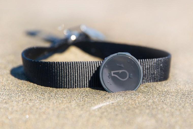 Image: Whistle dog tracker