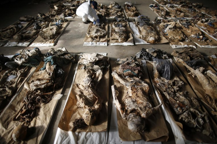 Image: A forensic expert of the International Commision on Missing Persons (ICMP) inspects human remains found in a mass grave in the village of Tomasica at Sejkovaca Identification center in Sanski Most