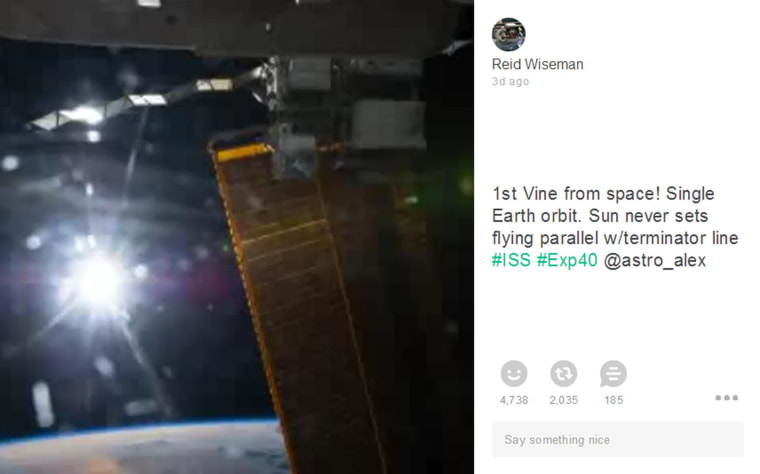 First Vine from space.
