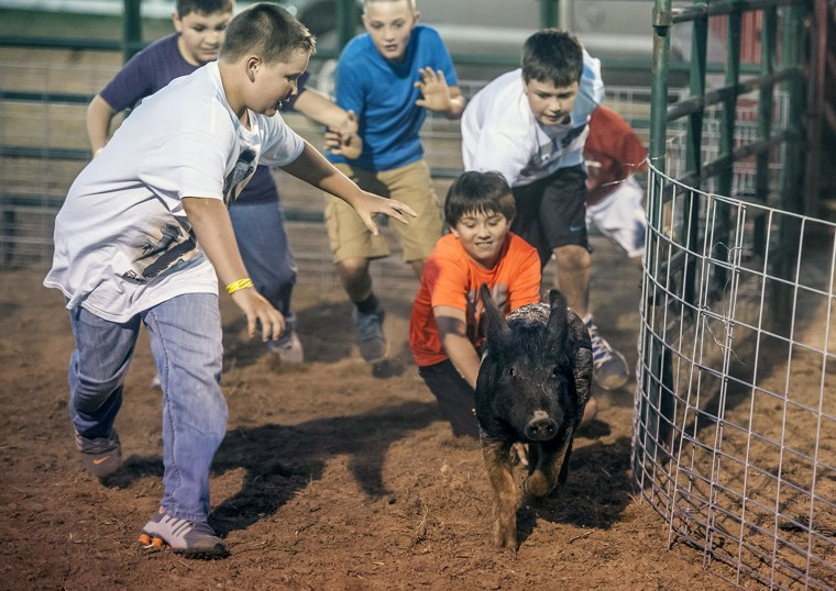 Ten to twelve-year-olds chase after the pig during the greased pig contest Wednesday June 25, 2014, at the Garrard County Fair near Lancaster, Ky.