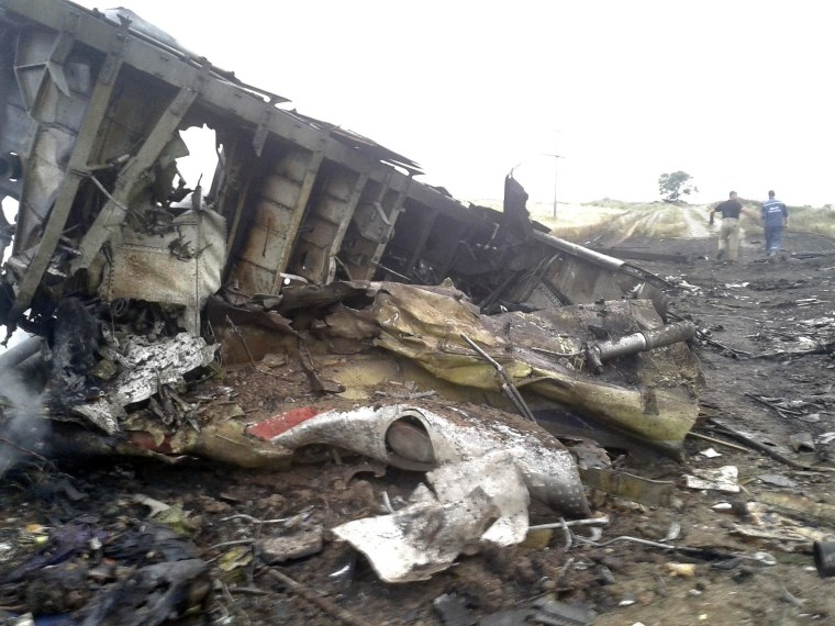 Image: Site of a Malaysia Airlines Boeing 777 plane crash is seen in the settlement of Grabovo in the Donetsk region