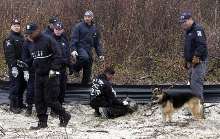 Image: Law enforcement and emergency personnel examine an object on the side of the road, center, near Jones Beach in Wantagh, N.Y., on April 11