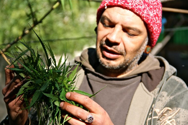 Image: Alvaro Calistro with his prized possession. He co-founded a soon-to-be legal cannabis club and the Cannabis Growers Federation in Uruguay