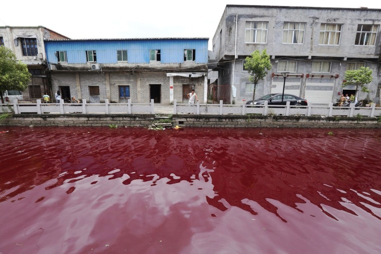 """Baffled locals who used to boast that they had one of the healthiest rivers in China because there were no factories along its banks were baffled when within the space of an hour the river turned a deep, dark red.  Clear plastic bottles dipped into the water at Xinmeizhou village in Cangnan county in eastern China's Zhejiang province quickly filled up with the red coloured liquid which had a strange smell, according to villagers.  Local Na Wan said: """"A few people that were up and about at 5 AM said that everything was normal but then suddenly within the space of a few minutes the water started turning darker and eventually was completely red.  """"The really weird thing is that we have always been able to catch fish and you can even drink the water because it's just normally so good. Nobody has any idea how it could have ended up being polluted because there are no factories that dump anything in the water here.""""  Environmental experts were on the scene taking samples of the water and said that they suspected it was discharged from a die factory even though there was none in the area.  One expert said: """"We suspect that maybe somebody drove here to dump stuff. We are looking further upstream to try and find out where the source was of this pollution."""""""