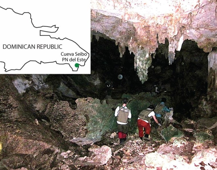Cueva Seibo, shown here, is located in the Dominican Republic's East National Park, as indicated on the inset map. The cave has a relatively small bat population, which researchers say may help explain why eyeless spiders are able to survive there.