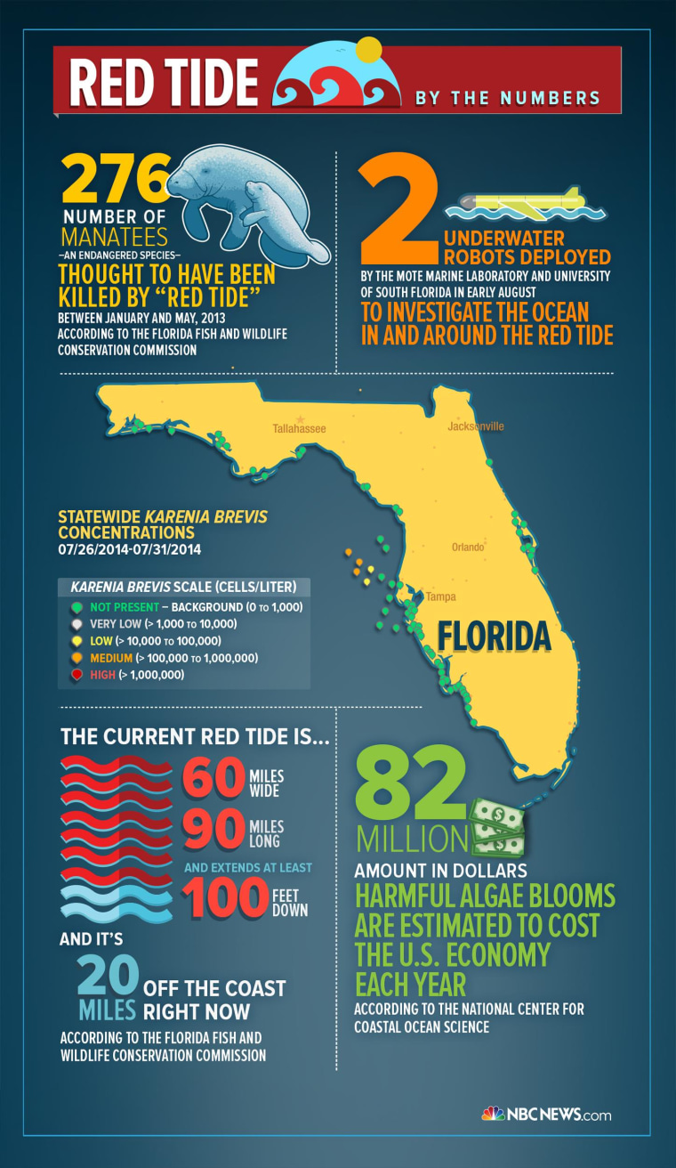 Image: An infographic on Florida's red tide