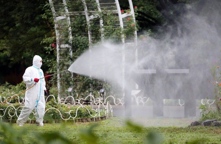 Image: A worker sprays insecticide at Yoyogi Park
