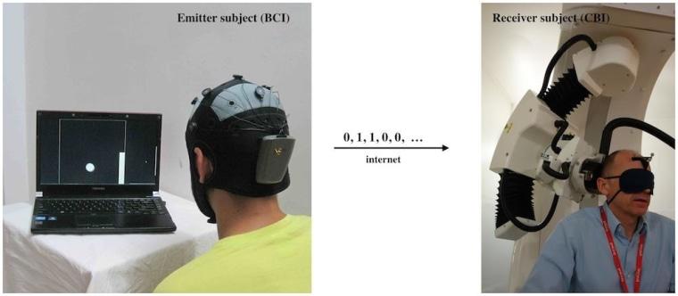 Image: Brain-to-brain link