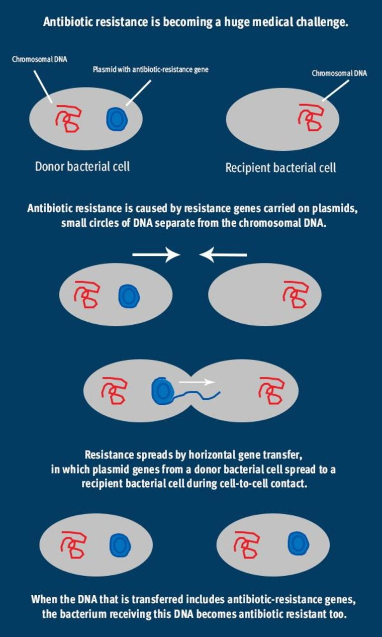 Image: Antibiotic resistance is becoming a huge medical challenge.