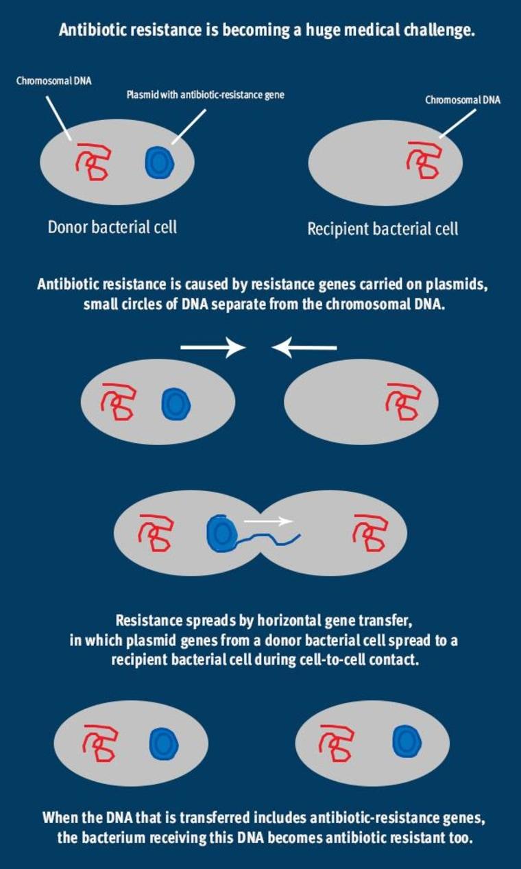 Image: Antibiotic resistance is becoming a huge medical challenge.