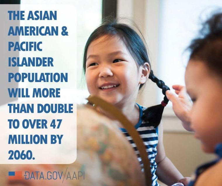 Data.gov/aapi infographic