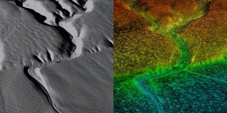 A pair of images derived from Lidar instruments.