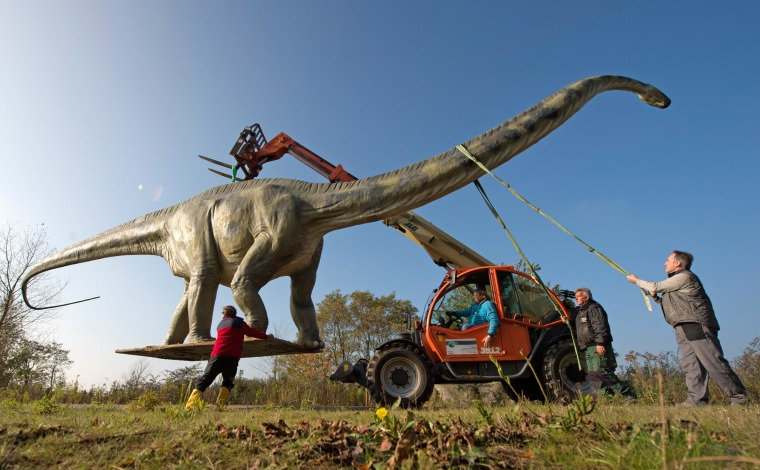 Workers transport a model of a dinosaur at the World of Dinosaurs exhibition in Grosspoesna, central Germany, on Oct. 29, 2014.