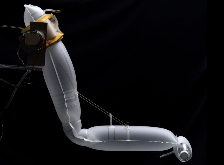 A soft robotic arm created by Siddharth Sanan in CMU's soft robotics lab.