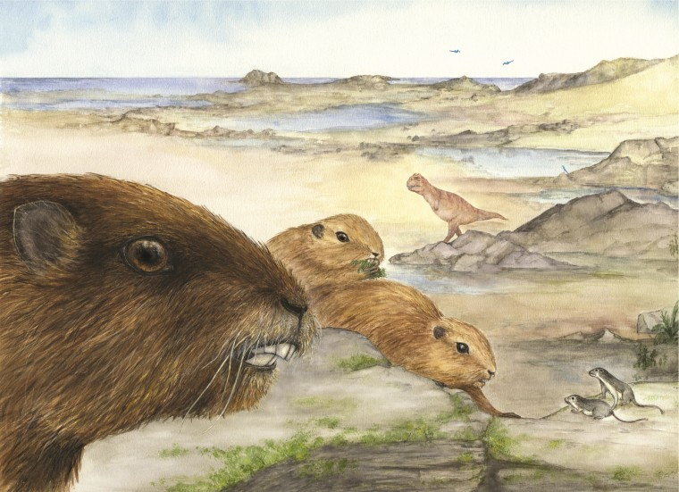 An artist's conception shows the groundhog-like mammal known as Vintana sertichi within the context of the tidal environment and fauna of the Late Cretaceous of Madagascar.