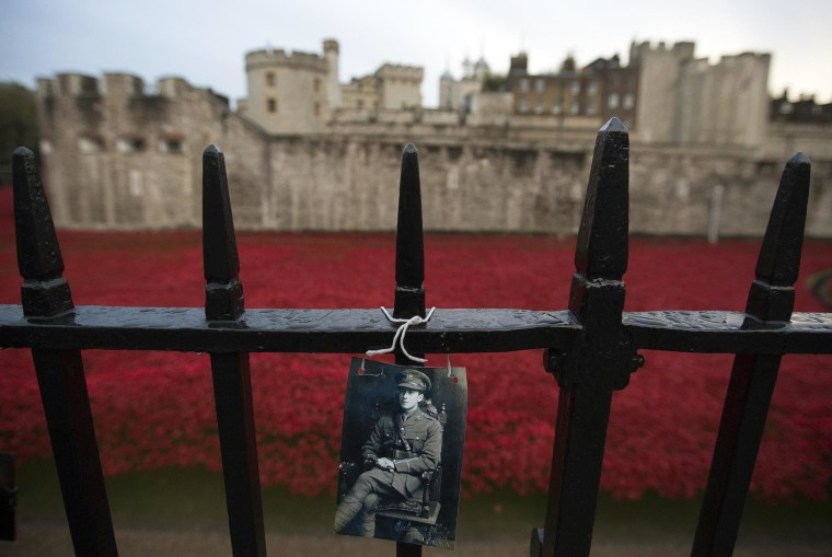 Image: Photograph of a soldier is seen placed on a fence near an art installation, on Remembrance Sunday, at the Tower of London