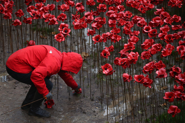 Image: Volunteers Start To Remove Tower Of London Poppies