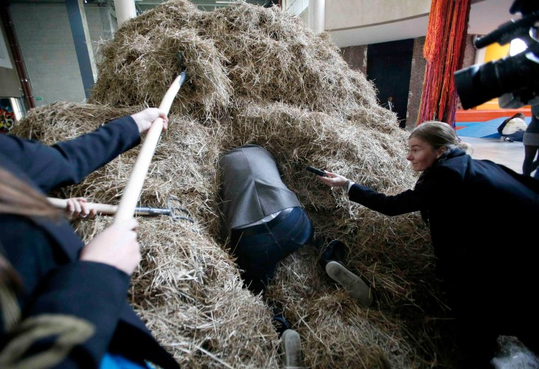 """Image: Jean de Loisy, Palais de Tokyo director, hides a needle in a haystack before an art performance based on the expression """"looking for a needle in a haystack"""" at the Palais de Tokyo museum in Paris"""