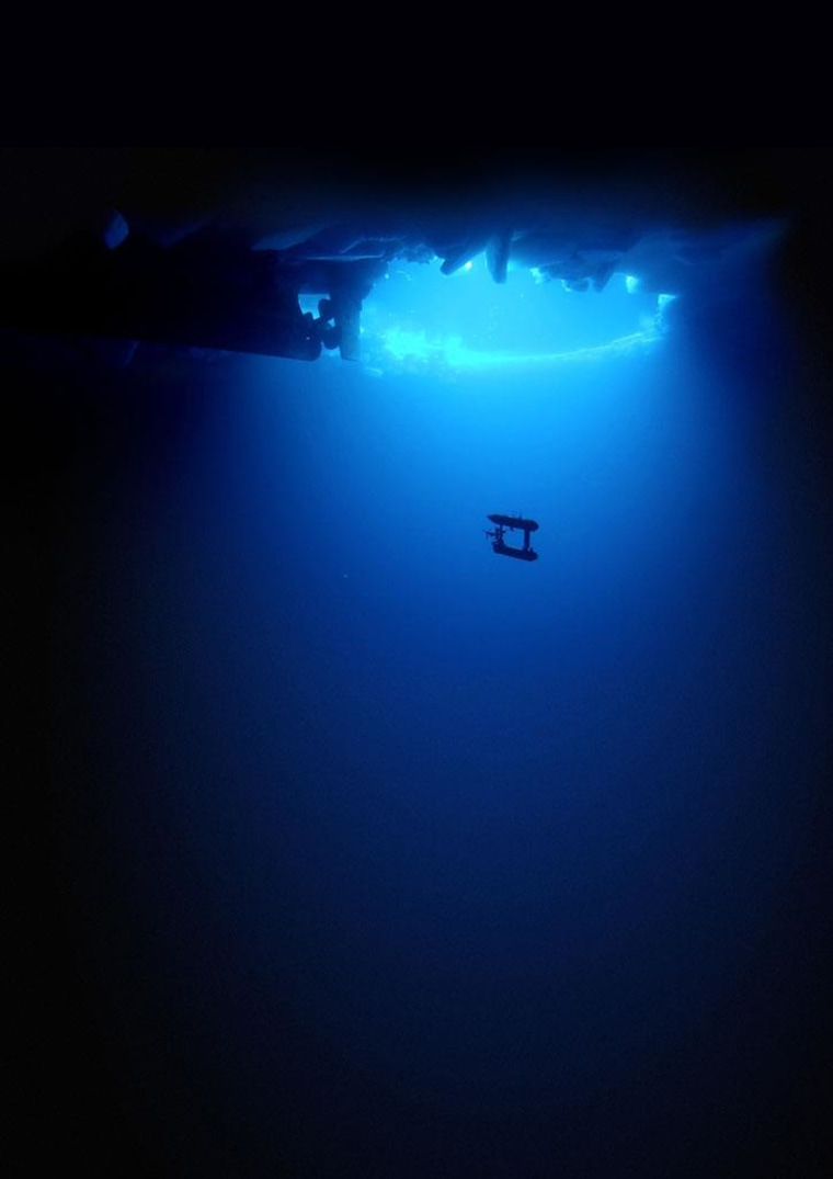 Image: The SeaBED underwater robot is seen under Antarctic sea ice
