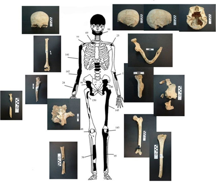 Image: Sketch of a female human skeleton labeled with remains discovered at Amphipolis in northern Greece